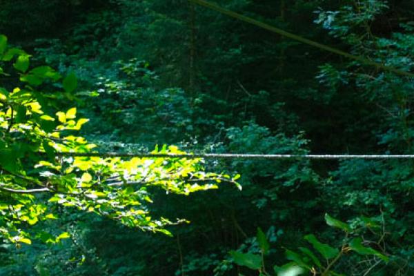 zugspitze-postalmklamm-via-ferrata-tura-23495F663-4D84-C242-0038-1B4D85BCDF42.jpg