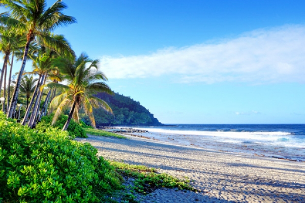 reunion-kalandnyaralas-tura-plage-plazs-beach-strand-part-homokos-palmafa7537957D-A675-552E-BAF4-066CF3681B8A.jpg