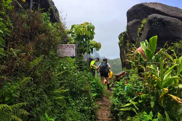 hawaii-kauai-kalandtura-utazas-82F08E198C-BF72-3524-07C8-4E92867A4369.jpg