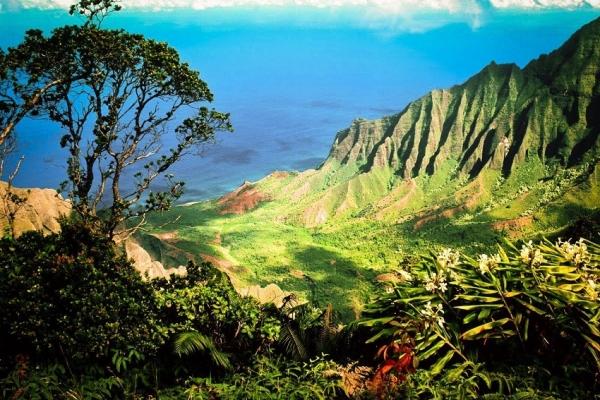kauai-03ED779AEC-4934-8352-20B8-5AF4BD42229F.jpg
