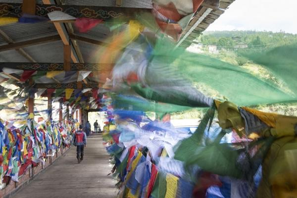 bhutan-magashegyi-tura-32F6D6E4D7-09A3-CB86-0F7E-0A04F9D4D252.jpg