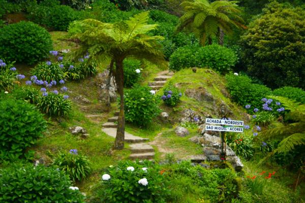 kalandnyaralas-tura-azori-szigetek-221A43038D-6204-73EE-02F3-267F90F1991A.jpg