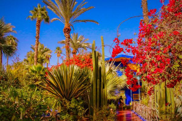 marokko-tura-maszas-atlasz-csucsa-jbel-toubkal-18A360C6D3-451A-2F2B-EC75-9D6A347F6A42.jpg
