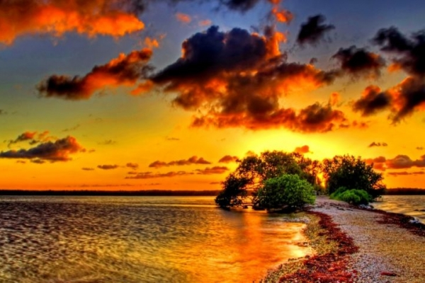 kalandnyaralas-tura-azori-szigetek-2-faial-flores-pico-14E1189564-7308-0777-1798-FF20E6D7D3B9.jpg