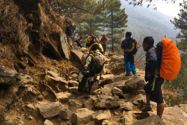 everest-alaptabor-trekking-tura-11949ADBAE9-8038-145F-1068-10838435A2CF.jpg