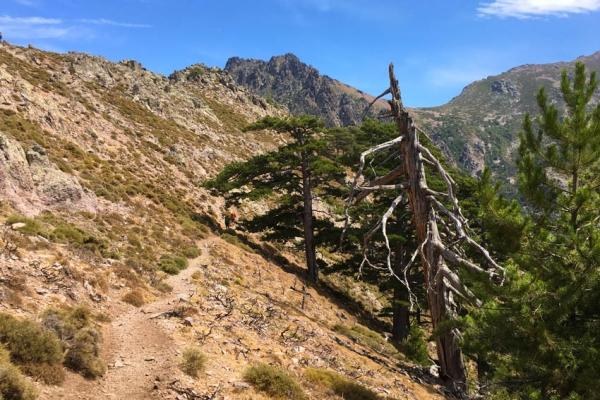 gr20-korzika-europa-legnehezebb-trekking-tura-952953C7D3-487C-BE8B-0BB5-D66EDA57BA7B.jpg