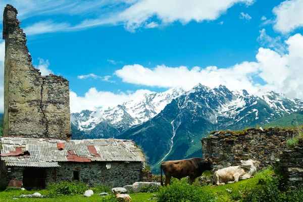 gruzia-kaukazus-tura-trekking-92821901B-086F-ED2A-5CCE-2607C43B339E.jpg