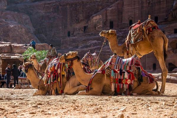 jordania-kaland-tura-kanyoning-55FE6020EC-3304-E3A9-9B4F-C31ADBAB6708.jpg