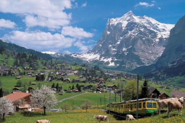 svajc-trekking-tura-grindelwald-interlaken-eiger-monch-jungfrauF5A6BCDD-9F35-7AA6-8A95-4E1AE17552AF.jpg