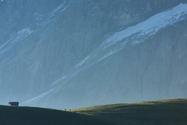 svajc-trekking-tura-ultra-trail-eiger-monch-jungfrau2325165E-DA97-076E-DEFA-57F0355888BC.jpeg
